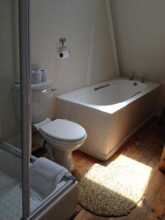 main bathroom with roof skylight