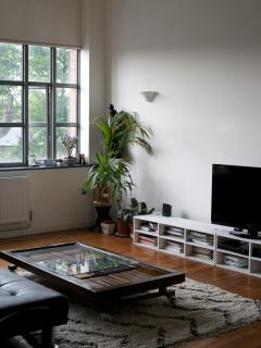A stylish flat in dalston( east london)