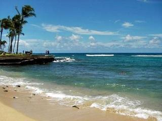 Free Mid-size Car with Kuhio Shores 207 Spectacular oceanfront 1bd