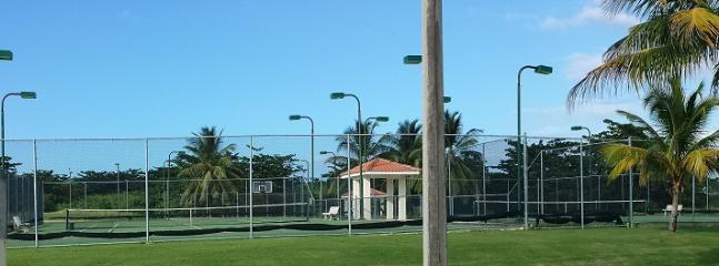 Complex Tennis Courts, after Jan 1, 2014, fee may apply