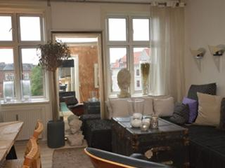 Large Copenhagen apartment at Bopa square, Copenhague