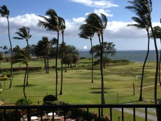Stunning Ocean View 2/2 Affordable!, Kihei