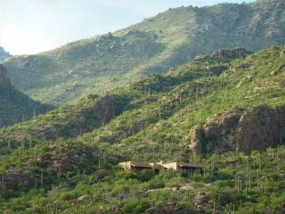 Mountain Estate Ventana Canyon - Guest Membership!, Tucson