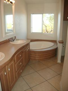Large master bathroom w/double sink vanity, deep garden tub, seperate shower