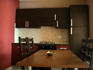 Apartment A4 - 45m2 kitchen