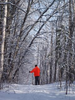 Snowshoeing on the Trails