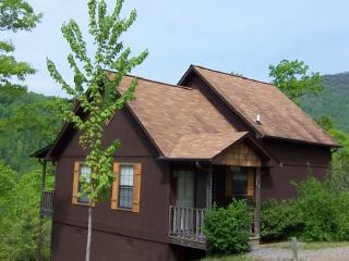 The Aster Cabin at Laurel Mountain Cabins, Hiawassee