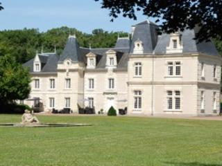 The Château de Jalnay, a very romantic and nice pl, Glénouze