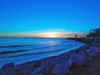 Beautiful! Venice Beach Zen inspired Retreat
