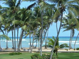 Rustling Palms, Punta Cana