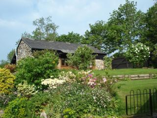 Pet friendly self Cater cottage, Dartmoor