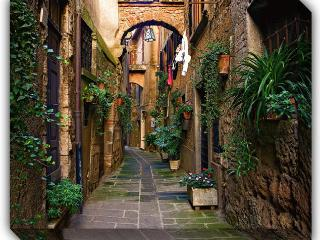 Orte -a beautiful medieval hilltown 35 min to Rome