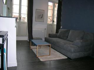 4 sleeps apartment next to downtown, Toulouse