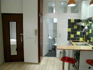 Modern Studio - next to Capitole