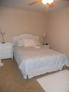 Second Bedroom with queeen bed