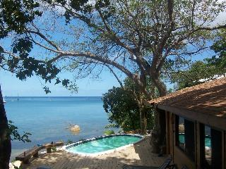 Ocean & Beach Front West Bay Beach 1 Bedroom Seahorse Villa, Roatán