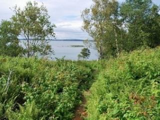 Private Island - Great for Reunions - Sleeps 24