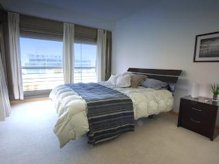 Luxury 2 bedroom apartment - Juana Manso and Encarnacion Ezcurra st, Puerto Madero (78PM), Buenos Aires
