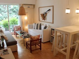 Beautiful and sunny 2 bedroom apartment - Juan Francisco Seguí  and Lafinur st, Palermo (133PS), Buenos Aires