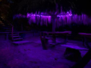 Beach Palapa at Night
