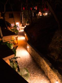 Lighted pathway at night