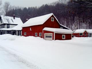 Live & Breathe VT- Village Home, Yoga Studio, Ski!