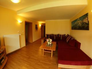 Landhaus Kitzbichler Apartment 4