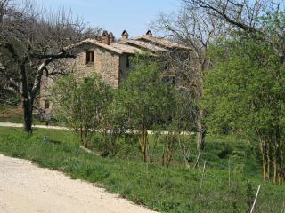CASALE VIGNOLO, La Casa, Orvieto