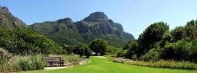 Kirstenbosch Botanical Gardens - a world heritage site is a  15 min by car from the apartment