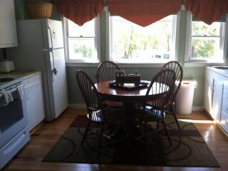 Adirondack 4season Apt Rental North Creek NY Gore!