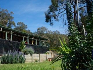 wineries, beach and fine food in the forest, Red Hill