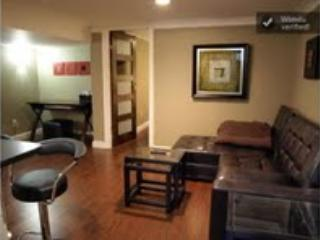 WOW  Downtown - Lower 1-Bedroom Apartment, Toronto