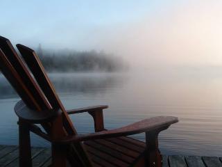 Blue Heron\Waterfront cw Algonquin Pass-Pets Free!, Algonquin Provincial Park
