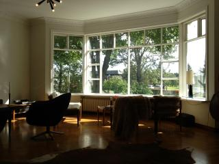 Gorgeous vintage park side apartment, Reikiavik