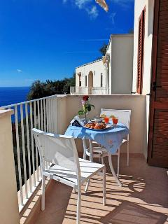 Terrace overlooking the sea furnished with a table,chairs and awnings