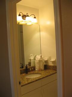 In-Law Suite Bathroom