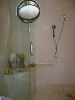 onynx port window in shower, handheld and overhead showerheads
