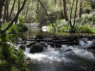 Year-round Santa Ana River borders property