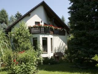 LLAG Luxury Vacation Apartment in Dresden - 538 sqft, high-quality furnishings (# 4391)