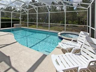 CLOSE TO DISNEY LUXURY 6BR/4.5BA SOUTH FACING POOL BACK TO FOREST