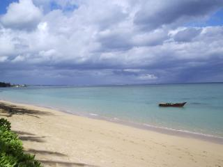 Punaluu Beach 1bd/1ba Condo, #401