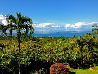 Maui Ocean Palms-Luxury  Wailea  Home wPool, Views