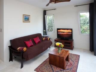 Living room - futon