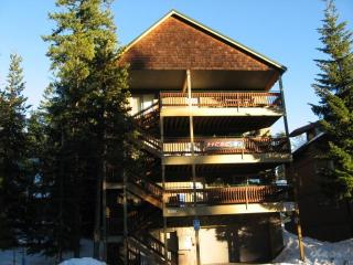 Boardwalk Lodge w/two Hot Tubs.  Sleeps Up to 48.   Government Camp, OR, Mt Hood
