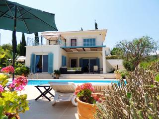 Villa Gladiolous 2, Neo corion