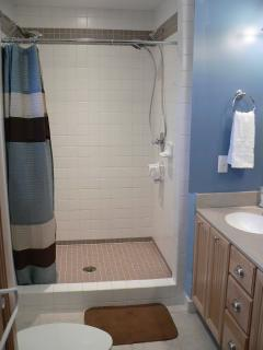 Large Master Shower with two spray heads