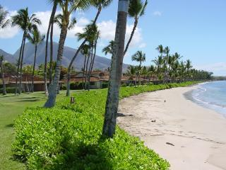 PUAMANA 3 BEDROOM BEST VALUE AND GREAT LOCATION!!, Lahaina
