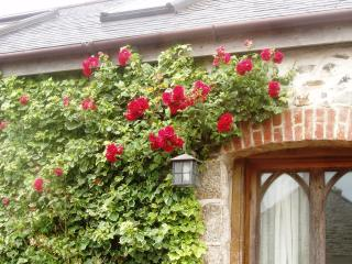 Roses round the door at Hat's