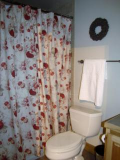 Garden level bathroom