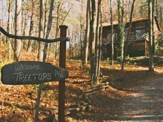 'Treetops' in the North Ga Mountains.  With WIFI!